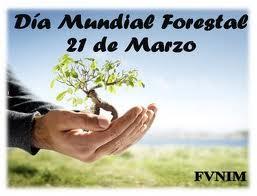 dia forestal mundial 2012